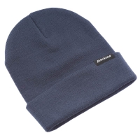 Dickies beanie i navy Blue med Dickies logopatch